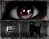 *.:.* BlackCat's Boutique UPDATED New Innocent Skin Set!! (3/18/10) *.:.* Images_0cbea926c16618df7e902237a8cb0589