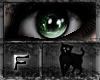 *.:.* BlackCat's Boutique UPDATED New Innocent Skin Set!! (3/18/10) *.:.* Images_7fcb7424dcc0011cfc36d4abef1fb26b
