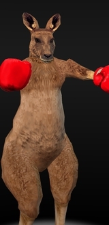 Boxing Kangaroo Fighters LOL Funny Red Gloves Silly Halloween